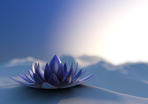 Winter zen flower