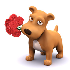 3d Dog romantically offers a bunch of red roses