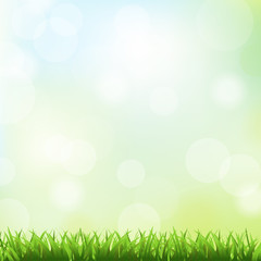 Green Grass And Spring Background
