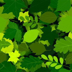 seamless pattern with green leaves. Vector.