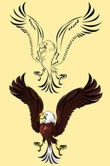 Bird of Prey Eagle