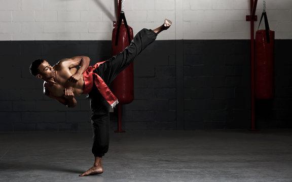 martial arts kick