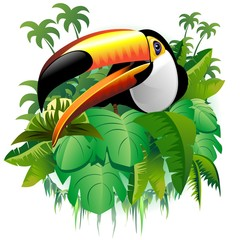 Poster Draw Tucano Vegetazione Tropicale-Toucan on Tropical Plants-Vector