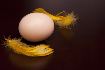 egg on table