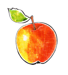 handmade illustration: Apple