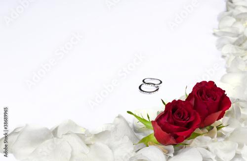 wei e rosenbl tter mit roten rosen stockfotos und lizenzfreie bilder auf bild. Black Bedroom Furniture Sets. Home Design Ideas