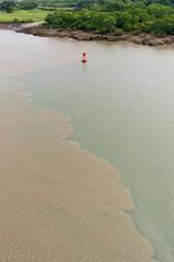 Mud disturbed by ships transiting Culebra Cut