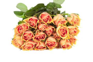 Strauß frischer Rosen