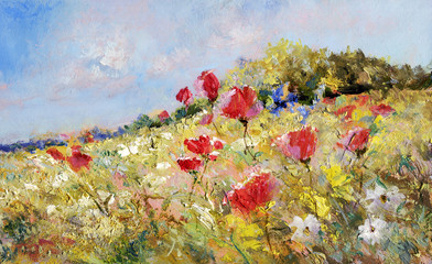 painted poppies on summer meadow