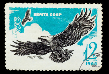 USSR - CIRCA 1965: A stamp printed in USSR, shows golden eagle,