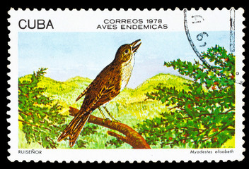 CUBA - CIRCA 1978: A stamp printed by Cuba, shows Bird Cuban Sol