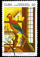 CUBA - CIRCA 1978: A stamp printed by Cuba, shows Bird Cuban Red