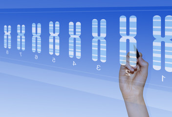 Chromosome research for analysis of genetic abnormalities
