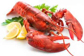 Zelfklevend Fotobehang Schaaldieren Lobster