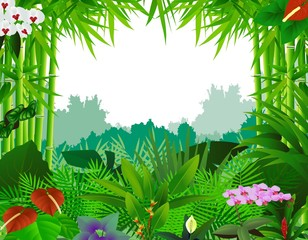 nature background with bamboo tree
