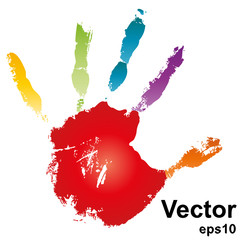 Vector hand painted on white background
