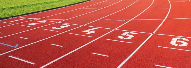 Estores personalizados esportes com sua foto laufbahn sport eins bis sechs