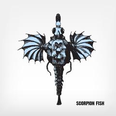Engraving vintage Scorpion fish.