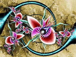 Orchidée fractale