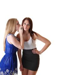 Two girls whispering.