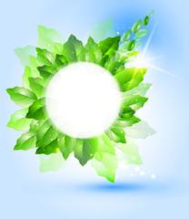 Summer or spring vector illustration for fresh design