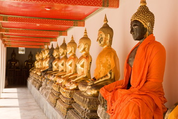 The row of golden buddha at wat pho thailand