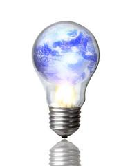 Lightbulb burning earth