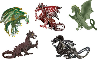 five color dragons isolated on white