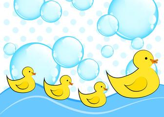 gelbe entchen schwimmen