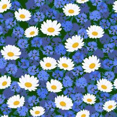 Seamless camomiles and cornflower pattern