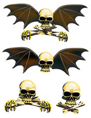 four skulls isolated on white