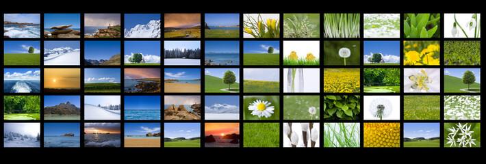 Bilder von den vier Jahreszeiten
