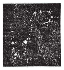 Scorpion constellation, vintage engraving.