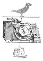 Cuckoo clock vintage engraving
