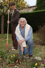 An elderly couple gardening
