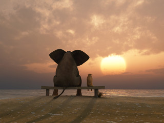 Fototapeta elephant and dog sit on a summer beach obraz