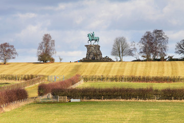 Fototapete - The Copper Horse Statue in Windsor Great Park