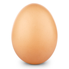 Brown egg isolated on white background + Clipping Path