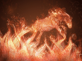 Horse of fire jump out of flames