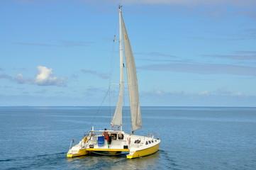 Homme qui voyage seul avec son catamaran