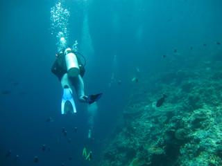 diving in sea