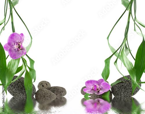 D cor zen orchid e galets bambou photo libre de for Image galet zen