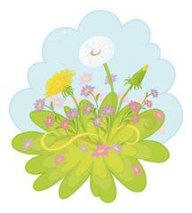Flowers dandelions in the sky