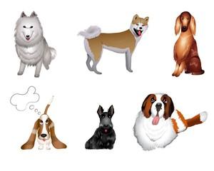 set breeds of dog