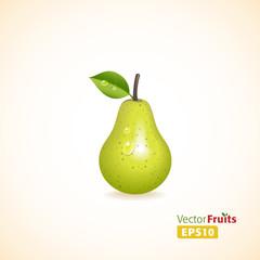 Vector fruits illustration
