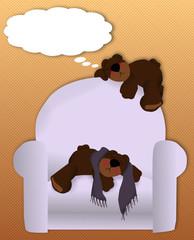Little bears snooze on chair, blank space-photos, text, caption