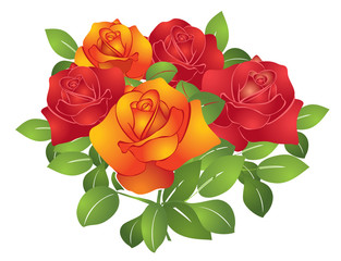 vector red and orange beautiful flowers - roses