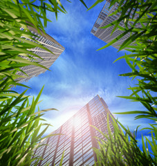 Fotobehang Aan het plafond grass and skyscrapers