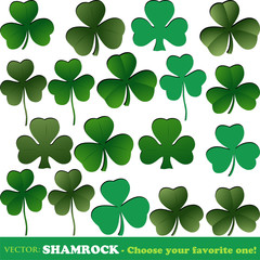 Shamrock collection isolated o white Vector