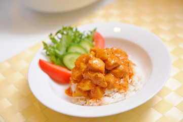 Yellow Curry Chicken with rice (Massaman Curry Chicken)